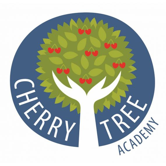 Cherry Tree Academy - Analyse School Report